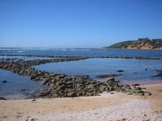 Ancient Fish Traps in Still Bay, South Africa, beautiful. Ancient Fish, Fishermans Cottage, Cottage Art, Seaside Towns, Africa Travel, South Africa, Trip Advisor, Scenery, Beach Paintings