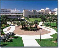 Florida Atlantic University and Florida Nu