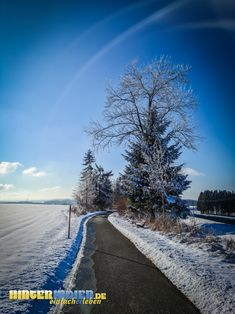 Winter bei Dreschersreuth in Frankenwald Country Roads, Beach, Outdoor, Hiking, Outdoors, The Beach, Beaches, Outdoor Games, The Great Outdoors