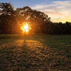 Sunrise.  #photography #photo #scenic #beautiful #landscape #sunrise #Michigan #puremichigan #outdoors #travel #nature #green #landscape #summer #sun #morning #landscapephotography #naturephotography #m36 #midmichigan #mi #light