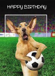 Fussball Humor Fussball Humor Humor Lustige Momente Fussball