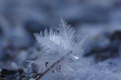/by ells ojala #flickr #winter