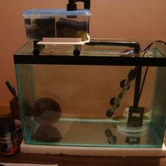 diy sump filter for aquariums