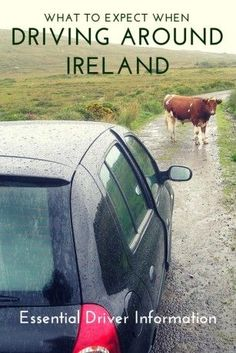 What to expect when #driving around #Ireland. Essential driver information #Travel