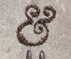#AmpersandDuJour, Bark Chippings ampersand by Sarah Lucy France