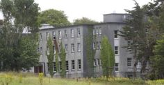 THE company that runs the Mount Trenchard direct provision centre near Foynes spends €120,000 per year on transport, $3,600 on broadband and a further €1,200 on satellite television.