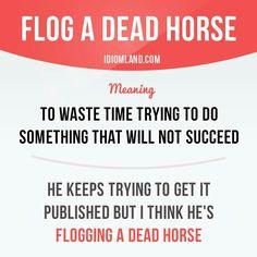 Flog a dead horse #English