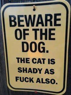 Beware of dog & cat.
