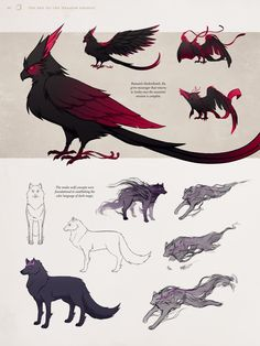 Creature Concept Art, Creature Design, Fantasy Creatures, Mythical Creatures, The Dragon Prince Book, Dnd Dragons, Dragon Princess, Avatar The Last Airbender Art, Dragon Pictures