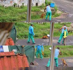 CRIMINAL - Perro asesinado por camión recolector de basura sufrió horas antes de morir | Seamos Más Animales... Como Ellos