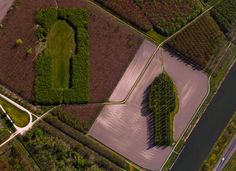 """Green Cathedral,"" near Almere, The Netherlands - photo by dailyoverview  (12/27/14);  This artistic planting of 178 Lombardy poplar trees forms a 'cathedral' that is 490 feet long and 246 feet wide, the size and shape of the Cathedral of Notre-Dame, in Reims, France. The artist, Marinus Boezem, also made a clearing in a nearby beech forest of the same shape."