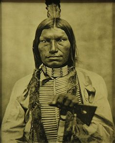 Low Dog, Sioux Chief by D.F. Barry, 1881.