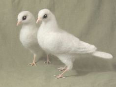 Needle felted White Dove, life sized poseable bird, wedding cake topper, peace love birds.