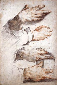Hendrick Goltzius, Four Studies of Hands, c. 1588–89