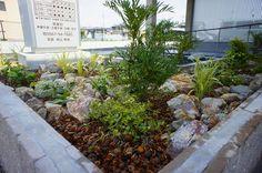 ナチュラルな植栽の花壇