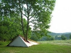 still life with tree (2008) . Chastreix / Massif du Sancy (F)