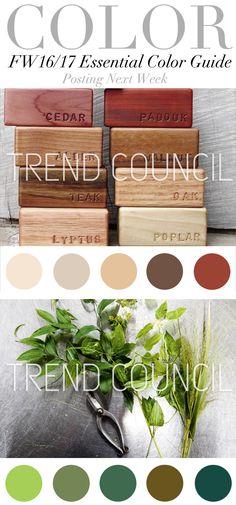 TREND COUNCIL: FW16/17 Essential Color Guide                                                                                                                                                      Mais