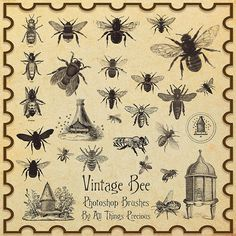 Vintage Bee Brushes by ~AllThingsPrecious on deviantART