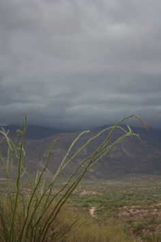 Pic taken by HAdams  View of the Monsoon over the RIncon Valley - Tucson, AZ July 2012