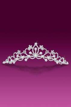 Bouquet of Flowers Pearl and Rhinestone Tiara ...to wear while I am doing housework with the birds ;D