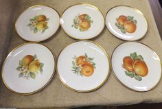 """6 Bavaria Hutschenreuther Selb Germany Pasco Fruit Decorated Plates - 8"""" #Hutschenreuther"""
