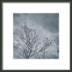 Land Shapes 16 Framed Print By Priska Wettstein WettsteinThis series is work in progress, I want to show the serenity, the unforgivness, the beauty of this landscape, where humans are only tolerated, not accepted.
