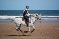 Beach Polo at West Sands Beach St Andrews, Scotland