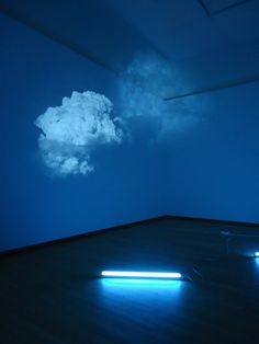 "Diana Thater - White is the Color, 2002, 2 video projectors, 2 DVD players, 2 DVDs, 1 single 48"" tube fluorescent light fixture"