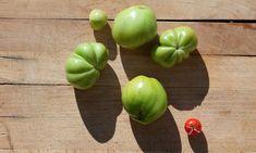 Spataderen verminderen met groene tomaten?!
