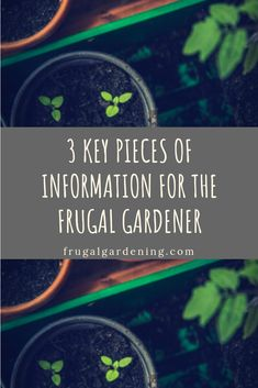 3 Key Pieces of Information for the Frugal Gardener - Frugal Gardening Frugal Living Tips, Learning Process, Budgeting Tips, Money Saving Tips, Gardening Tips, Key, Unique Key, Saving Tips