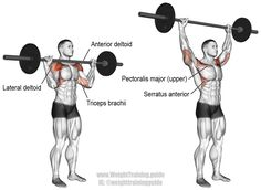 Barbell overhead press. A major compound exercise that'll help you to develop serious upper-body strength! Main muscles worked: Anterior Deltoid; Lateral Deltoid; Clavicular (upper) Pectoralis Major; Triceps Brachii; Upper, Middle, and Lower Trapezii; and Serratus Anterior.