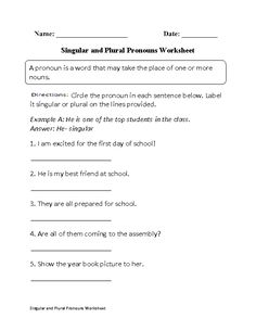 worksheet: Possessive Pronouns Worksheets For Grade 2 Family ...