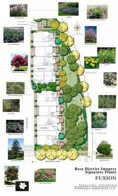 Rose District Landscape Rendering