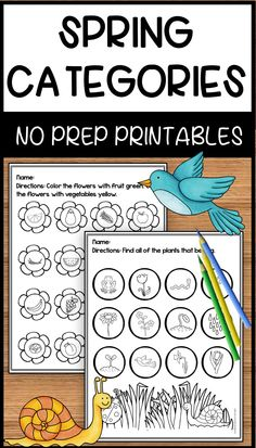 These fun, spring themed printables focus on basic categories. These are the perfect No Prep activities to use in your speech room.  Your preschool and early elementary students will have fun engaging in these activities while learning vocabulary for basic category themes. Just print and go when you need  a quick lesson!
