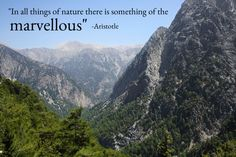In all things of nature there is something of the marvelous - Aristotle