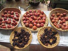 Homemade Umeboshi (Japanese salt-preserved plums) | JustHungry