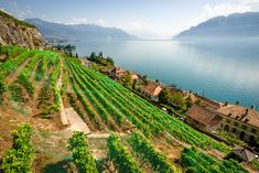 7 Beautiful Places In Switzerland You Have To Visit (3)