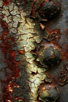 Ideas For Nature Texture Pattern Peeling Paint Natural Forms, Natural Texture, Natural Shapes, Patterns In Nature, Textures Patterns, Decay Art, Peeling Paint, Beautiful Textures, Abstract Photography