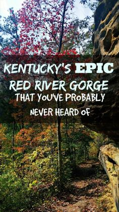 Introduction to Kentucky's Red River Gorge: the place for rock climbing, natural sandstone arches, hiking, suspension bridges and limestone cliffs.