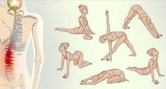 Ashtanga Yoga And Its Features Explained Yoga Fitness, Health Fitness, Sport Diet, Body Training, Back Exercises, Flat Abs, Ashtanga Yoga, Yoga Tips, Workout Programs