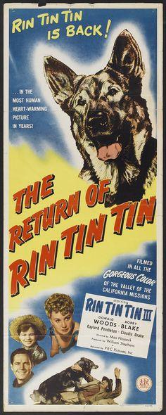 The Return of Rin Tin Tin (1947) Stars: Rin Tin Tin III, Donald Woods, Robert Blake ~ Director: Max Nosseck