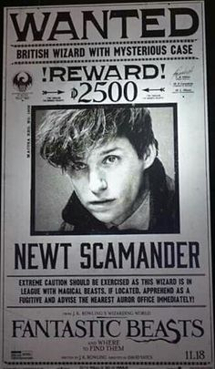 """Wanted - most kind, lovely and sexy """"Criminal"""" on the run ..."""
