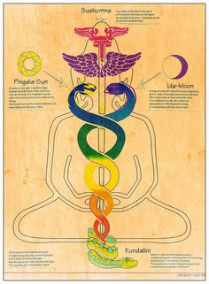 KUNDALINI YOGA AND MEDITATION The ancient practice of Kundalini Yoga helps you live a joyous, courageous and fulfilling life. It does this by waking up the Kundalini energy in the body which lays dormant in the spine. When awakened, this energy brings an