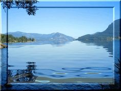 reflections anmated - Bing images