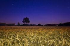Good Night by Petr Kubát on 500px
