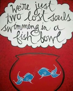 Not lost.Jesus saves. Fish bowl is true though. Night love