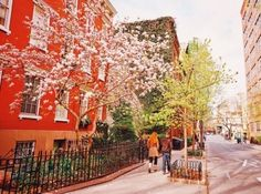 Spring forward. (West Village, New York City) (at New York, New...