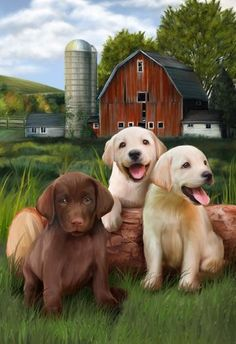 Gorgeous Lab Puppies by Thomas Wood Cute Puppies, Cute Dogs, Dogs And Puppies, Puppy Pictures, Animal Pictures, Animals And Pets, Cute Animals, Image New, Cross Paintings