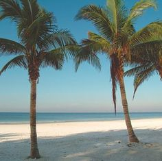 Fort Myers Beach, Florida, our favorite beach for 35 yrs!