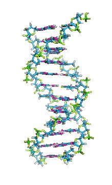 20 Great DNA Animated Gifs - Best Animations